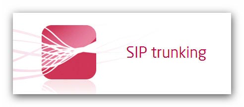V1 VoIP offers wholesale sip trunk solutions and services to resellers for small and medium size businesses
